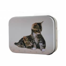 Etui de 18 Crayons de Couleur BIC KIDS Evolution