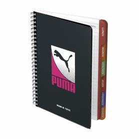 Schoolbag 38 cm Haflinger...